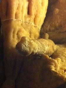 stalaktik eller stalamig?